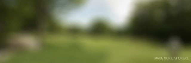 Accs Golf tout sur le golf